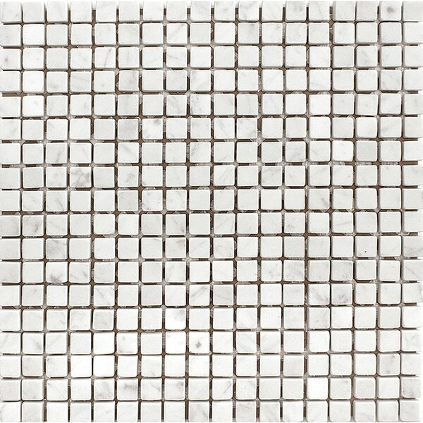 Carrara 0.625 x 0.625 Stone Mosaic Tile in White Tumbled by Parvatile