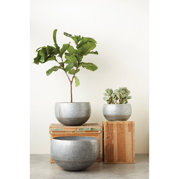 Hammons 3 Piece Galvanized Iron Pot Planter Set by Bungalow Rose