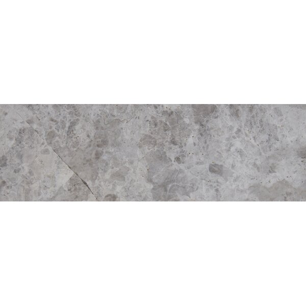 4 x 12 Marble Tile in Tundra Gray by MSI
