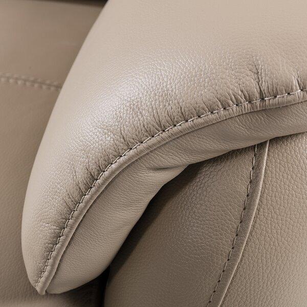 Shriner Leather Loveseat By Brayden Studio