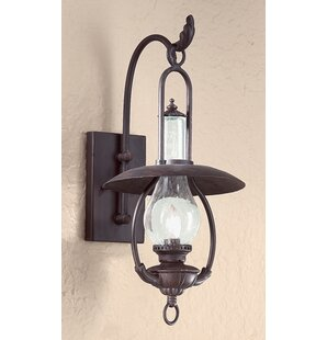 Best Reviews Theodore 1-Light Outdoor Wall Lantern By Darby Home Co