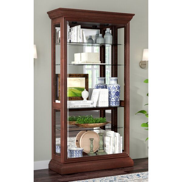 Nancy Eden Lighted Curio Cabinet by Darby Home Co