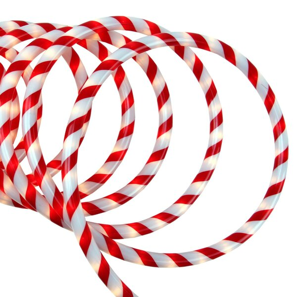 Candy Cane Rope Light by The Holiday Aisle