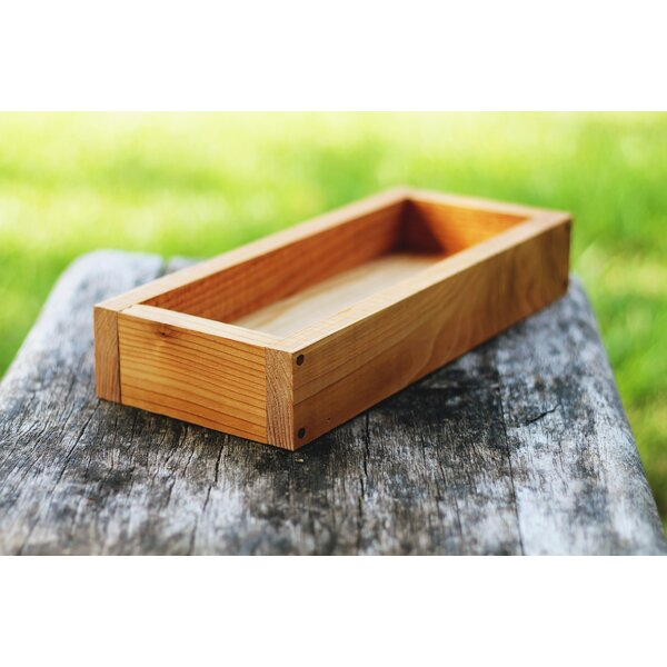 Delacruz Serving Tray by Millwood Pines