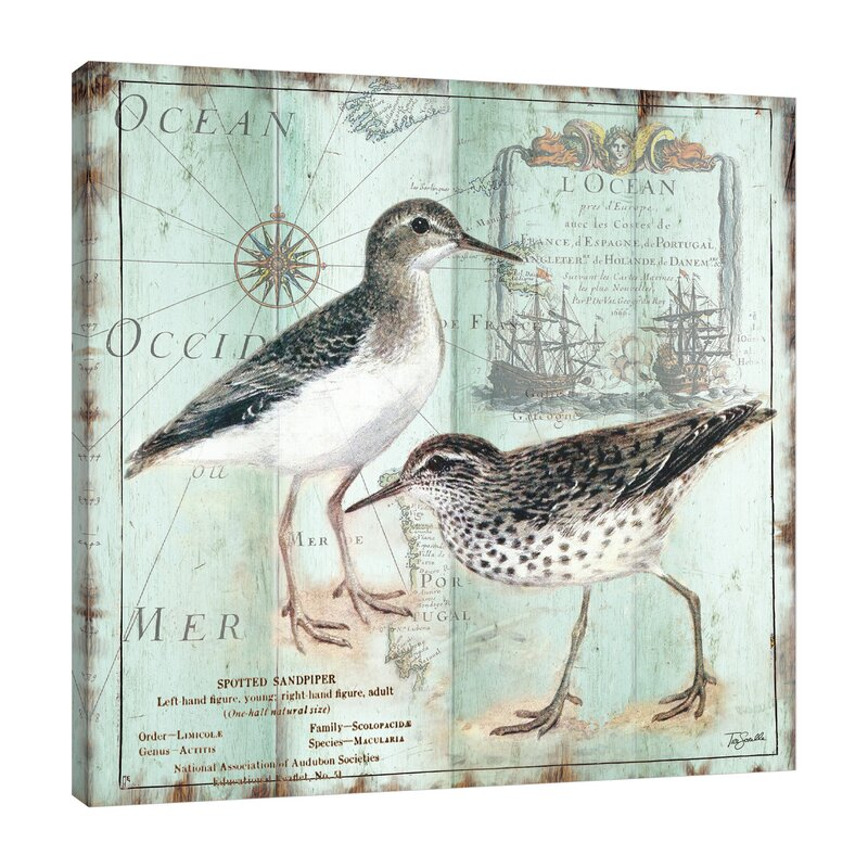 Fine Art Giclee Print on Gallery Wrap Canvas Sandpiper Sea I By Anne Tavoletti Ready to Hang