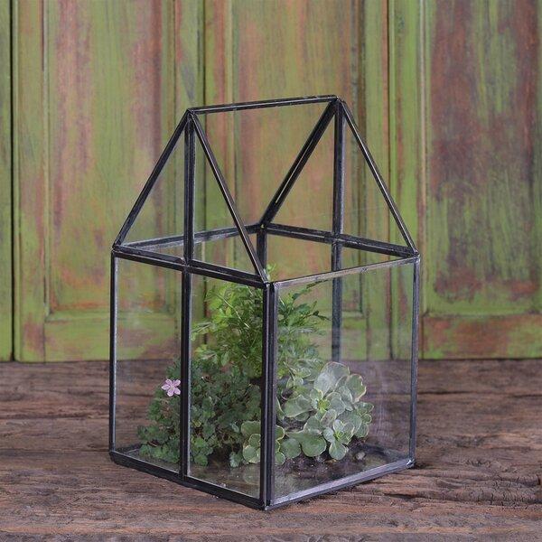 Migliore House Glass Terrarium by Wrought Studio