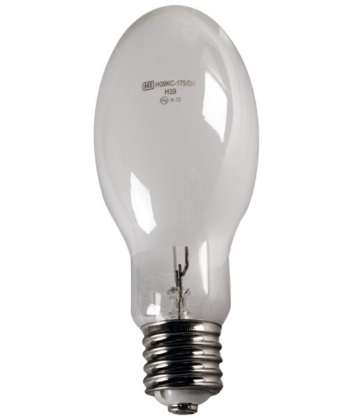 175W Light Bulb by Howard Lighting