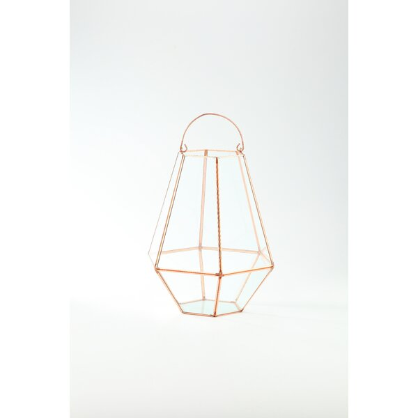 Glass Terrarium Hanging Planter by Diamond Star Glass