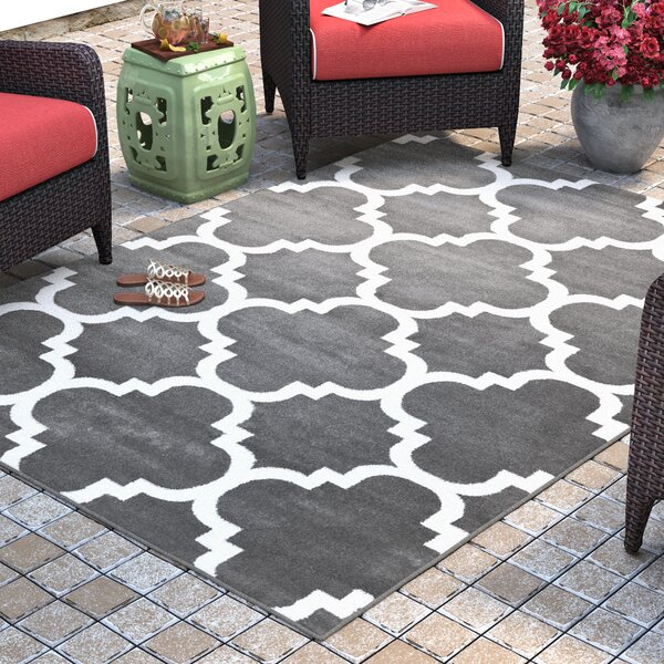 Blocher Charcoal  Indoor/Outdoor Area Rug by Charlton Home