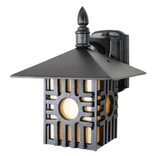 Great choice Penfield 1-Light Outdoor Wall Lantern By Alcott Hill