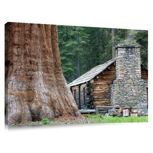 'Mariposa Grove Museum with Giant Sequoia Redwood Trees' by Dennis Frates Photographic Print on Canvas by Colossal Images