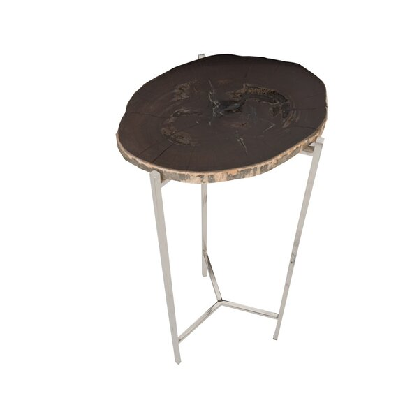 Petrified Wood Beverage End Table by Phillips Collection