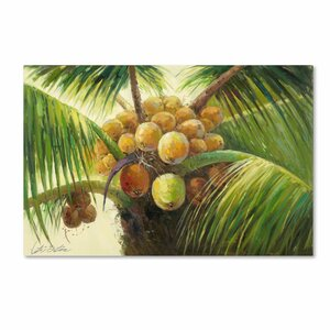 'Coconut Palm II' by Victor Giton Painting Print on Canvas by Trademark Fine Art