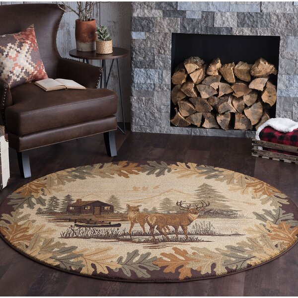 Meyers Brown/Beige Area Rug by Threadbind