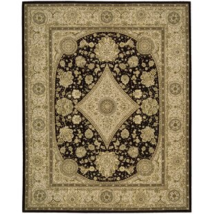 Reviews Buckhorn Hand Woven Wool Tan/Black Indoor Area Rug By Astoria Grand