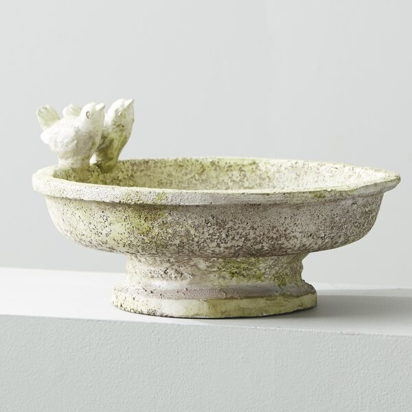 Finch Birdbath by OrlandiStatuary