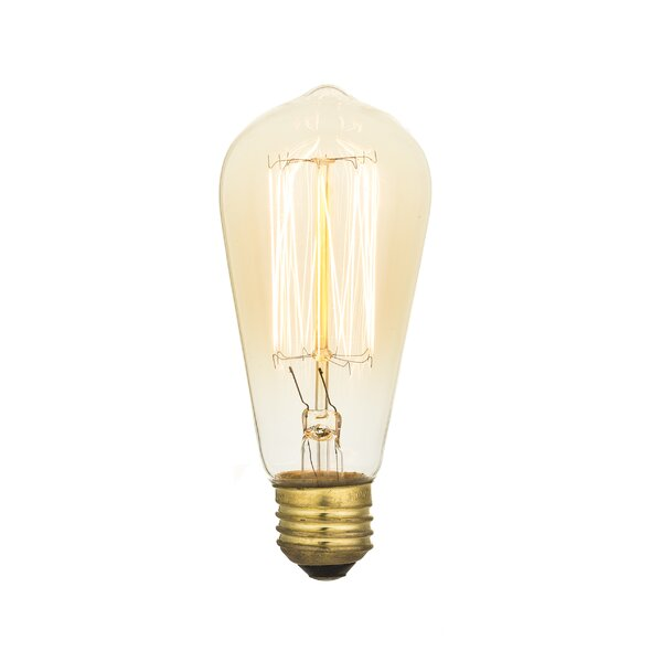 Edison 40W Incandescent Vintage Filament Light Bulb (Set of 6) by String Light Company