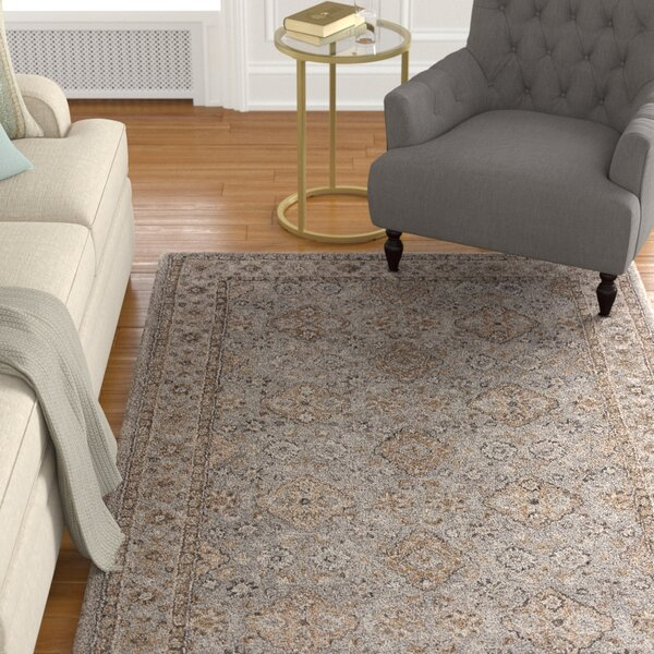 Hannah Hand-Tufted Cement/Chocolate Chip Area Rug by Astoria Grand