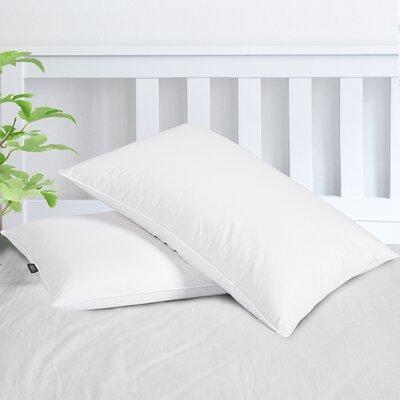 Goose Down Pillows You Ll Love In 2020 Wayfair