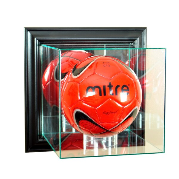 Wall Mounted Volleyball Case by Perfect Cases and Frames