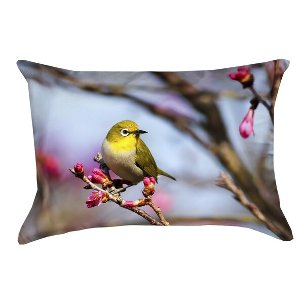 Holston Bird Outdoor Lumbar Pillow by Latitude Run