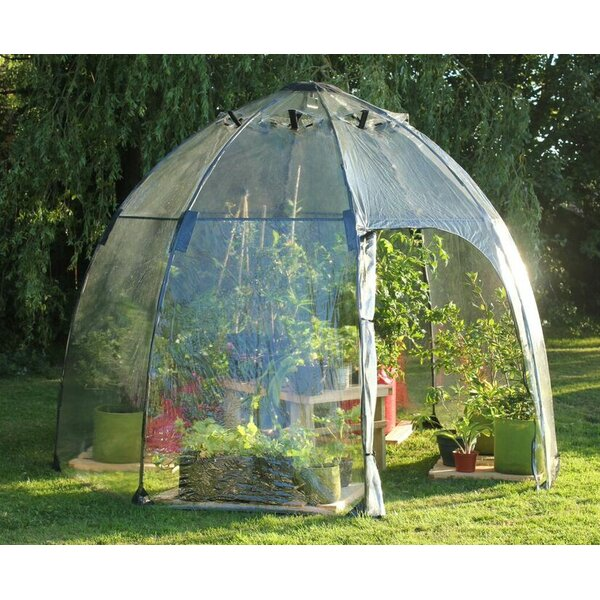 Haxnicks 9 Ft. W x 9 Ft. D Greenhouse by Tierra Garden