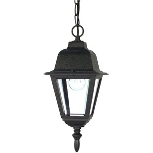 Affordable Price Monmouth 1-Light Outdoor Hanging Lantern By Breakwater Bay