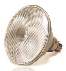 E26/Medium Halogen Light Bulb by Lumensource LLC