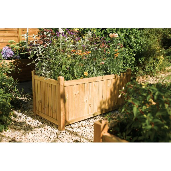 Fraher Wood Planter Box by August Grove