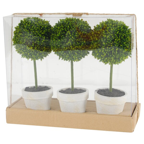 Floor Boxwood Topiary in Pot (Set of 3) by Charlton Home
