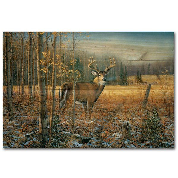 November Whitetail Deer by Sam Timm Painting Print Plaque by WGI-GALLERY