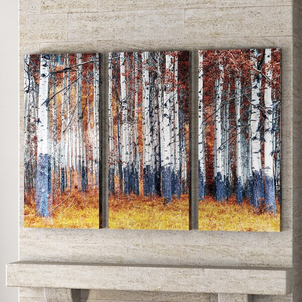 Autumn Forest 3 Piece Photographic Print on Wrapped Canvas Set by Red Barrel Studio
