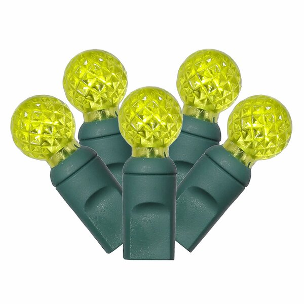 50 Light LED Light Set by The Holiday Aisle