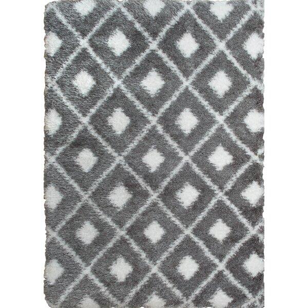 Abarca Gray/Ivory Shag Area Rug by Mercury Row