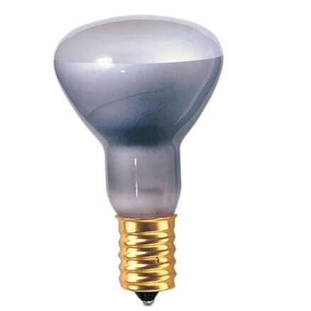 European 40W Grey (2600K) Incandescent Light Bulb (Set of 14) by Bulbrite Industries