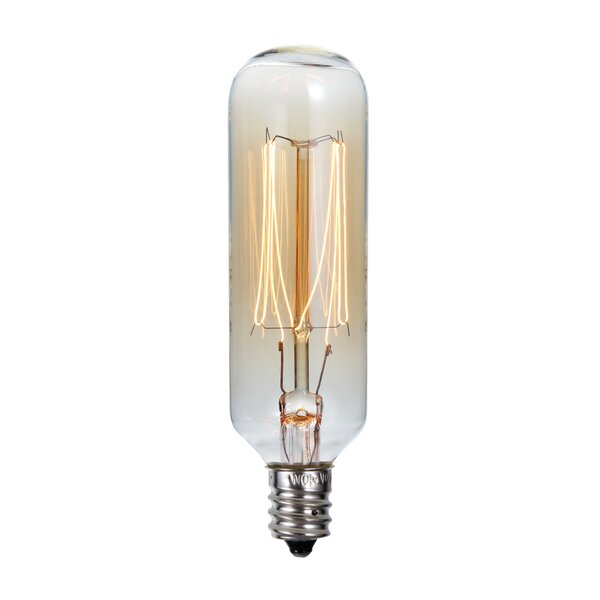 40W E12 Dimmable Incandescent Edison Light Bulb by Cal Lighting