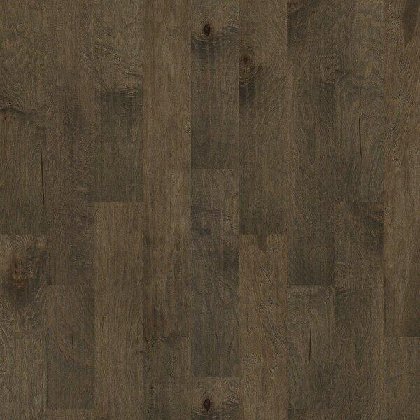 Locust Hill 6 3/10 Engineered Maple Hardwood Flooring in Newark by Shaw Floors