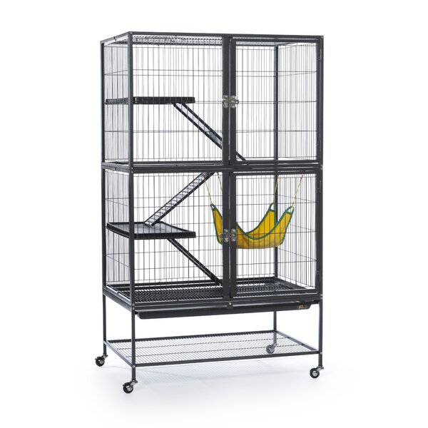 Feisty Ferret Cage by Prevue Hendryx