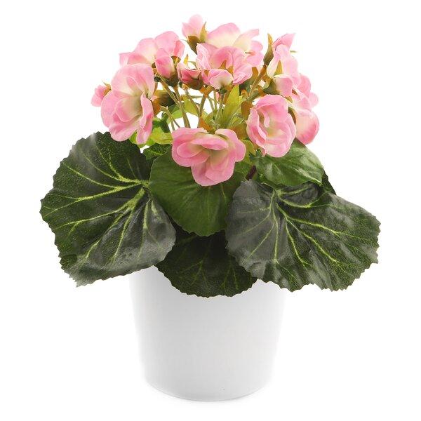 Artificial Desktop Flowering Plant in Pot by House of Hampton