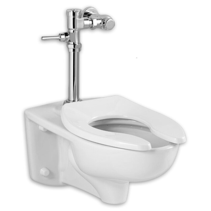Sophisticated Most Powerful Toilet Flush Valve Images - Best ...