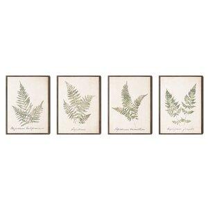 Leafy Prints 4 Piece Framed Graphic Art Set by Lark Manor