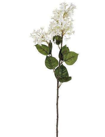 English Lilac Stem by Charlton Home