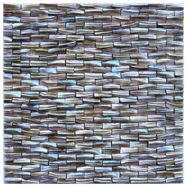 Massa 0.4 x 1.2 Seashell Mosaic Tile in Brown by NovoTileStudio