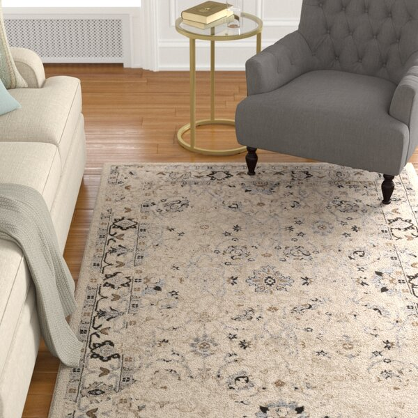 Broadview Multi-Colored Area Rug by Alcott Hill