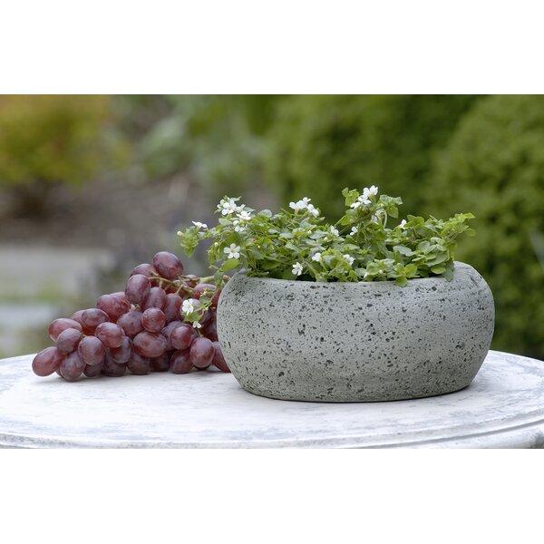 Wieczerza Cast Stone Pot Planter by Ivy Bronx