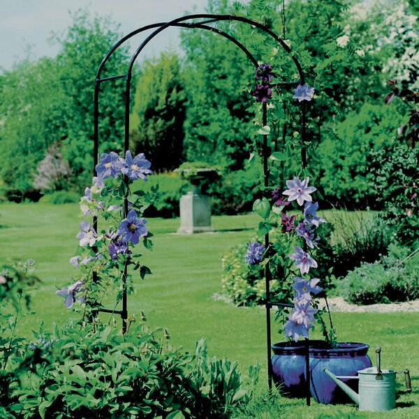 Rose Steel Arbor by World Source Partners