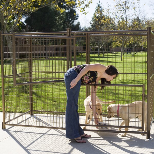 Nino Modular Galvanized Steel Yard Kennel by Tucker Murphy Pet