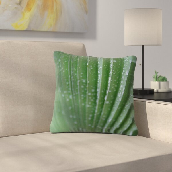 Cyndi Steen Palm Frond Nature Outdoor Throw Pillow by East Urban Home