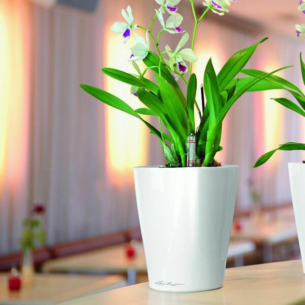 Deltini Self-Watering Plastic Pot Planter by Lechuza