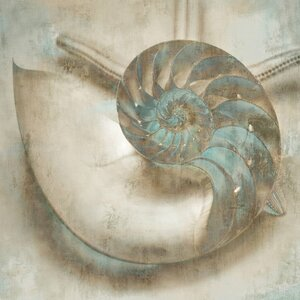'Coastal Gems IV' Graphic Art Print on Canvas by Beachcrest Home